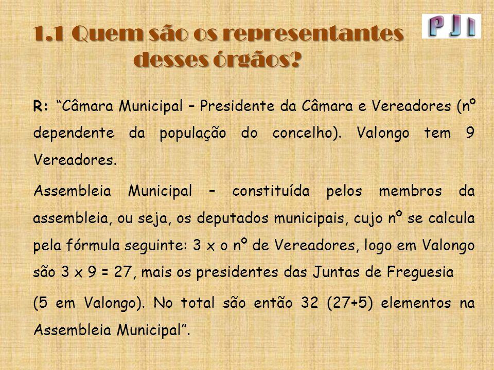 """1.1 Quem são os representantes desses órgãos? R: """"Câmara Municipal – Presidente da Câmara e Vereadores (nº dependente da população do concelho). Valon"""