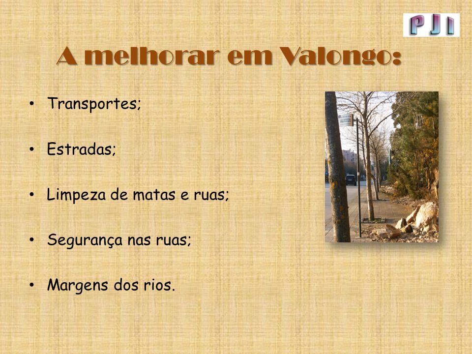 A melhorar em Valongo: Transportes; Estradas; Limpeza de matas e ruas; Segurança nas ruas; Margens dos rios.