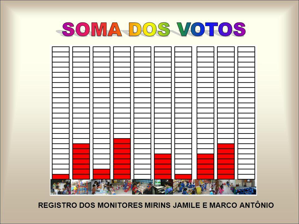 REGISTRO DOS MONITORES MIRINS JAMILE E MARCO ANTÔNIO
