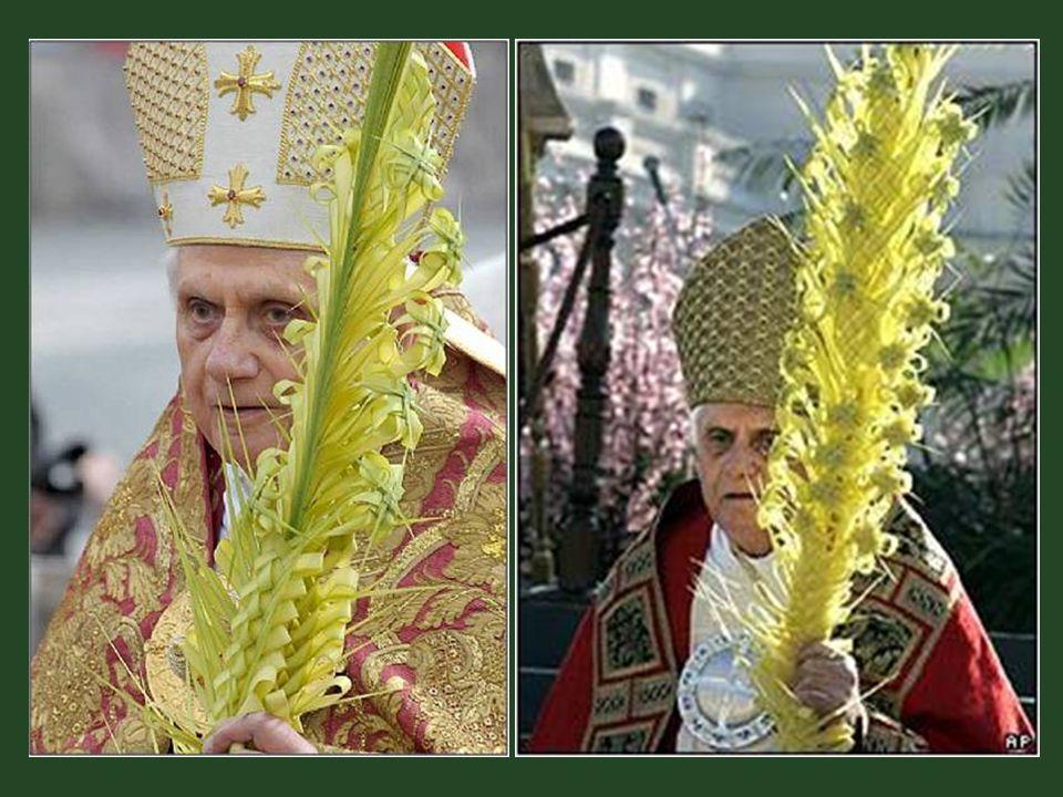 Desde então, já fazem mais de 420 anos, que seus descendentes continuam tendo esta prerrogativa papal, sendo eles que fornecem esses ramos da palmeira.