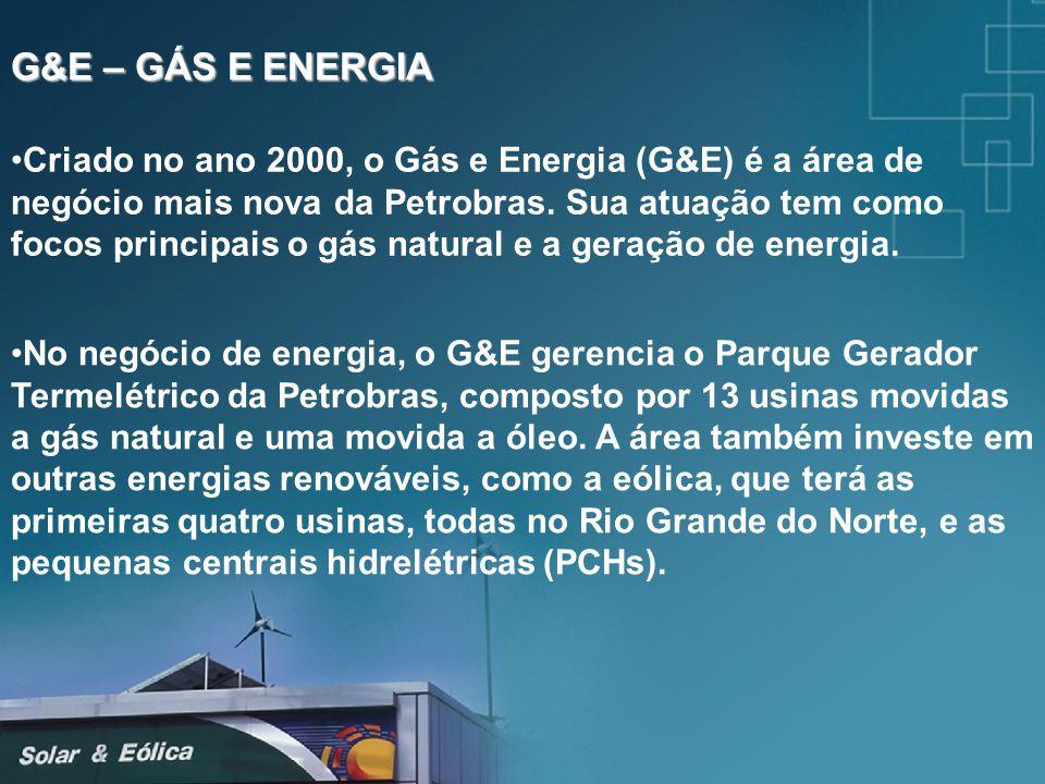 G&E – GÁS E ENERGIA Criado no ano 2000, o Gás e Energia (G&E) é a área de negócio mais nova da Petrobras. Sua atuação tem como focos principais o gás