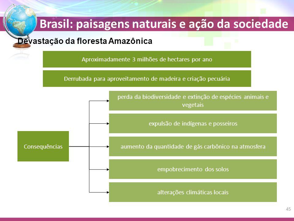 Brasil: paisagens naturais e ação da sociedade Devastação da floresta Amazônica Aproximadamente 3 milhões de hectares por ano Derrubada para aproveitamento de madeira e criação pecuária Consequências perda da biodiversidade e extinção de espécies animais e vegetais expulsão de indígenas e posseiros aumento da quantidade de gás carbônico na atmosfera empobrecimento dos solos alterações climáticas locais 45