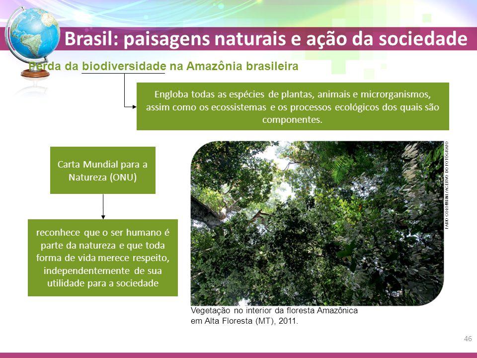 Brasil: paisagens naturais e ação da sociedade Perda da biodiversidade na Amazônia brasileira Engloba todas as espécies de plantas, animais e microrganismos, assim como os ecossistemas e os processos ecológicos dos quais são componentes.