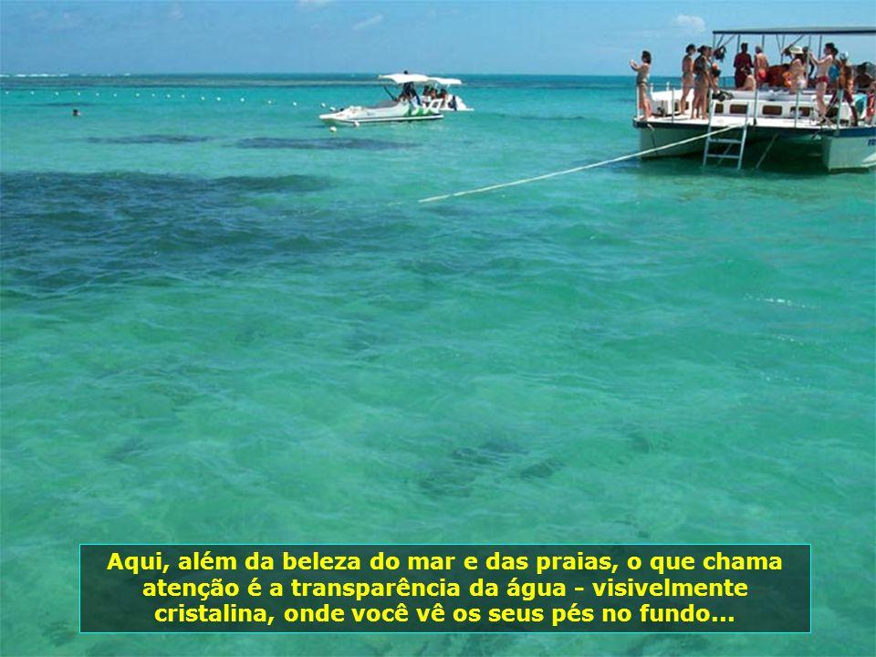 Embarcações próprias levam os hóspedes até as Galés, desfrutando o prazer dos mergulhos entre os corais, nas piscinas naturais...
