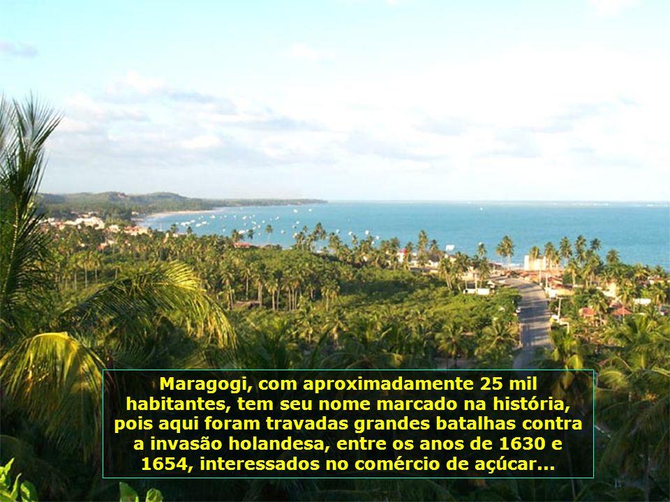 Maragogi, fundada em 1892, localiza-se ao norte de Alagoas, no Brasil, pequena cidade litorânea, se destaca pela beleza de suas praias e de suas pisci