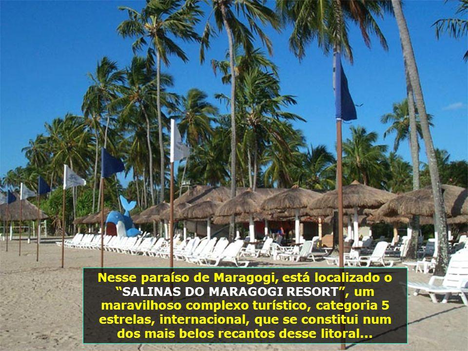 """O nome """"Maragogi"""" tem origem na língua tupi, falada pelos índios potiguares, que habitavam o norte de Alagoas, e significa Rio das Marambas..."""