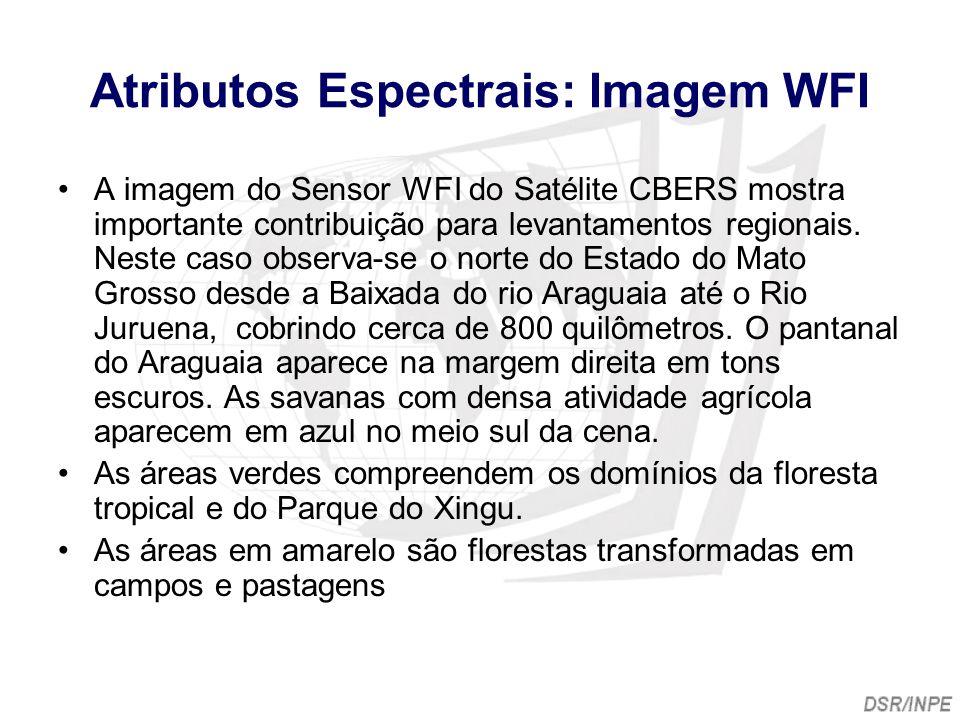Atributos Espectrais: Imagem WFI A imagem do Sensor WFI do Satélite CBERS mostra importante contribuição para levantamentos regionais. Neste caso obse