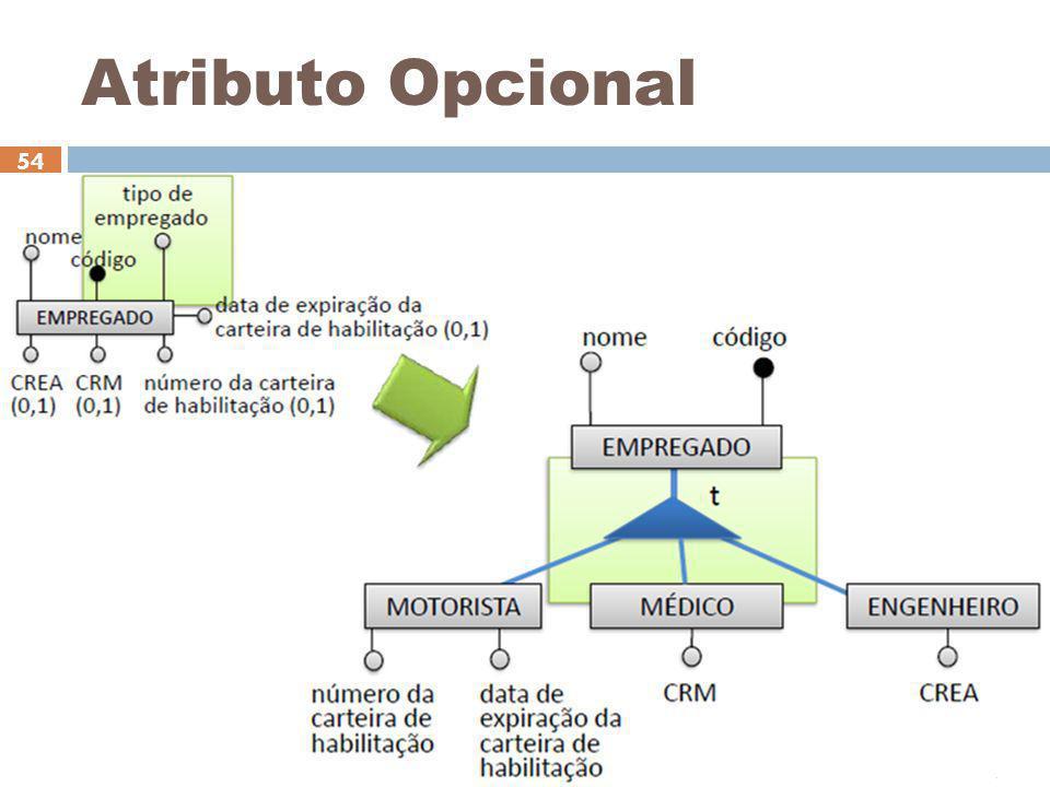 Ceça Moraes 54 Atributo Opcional