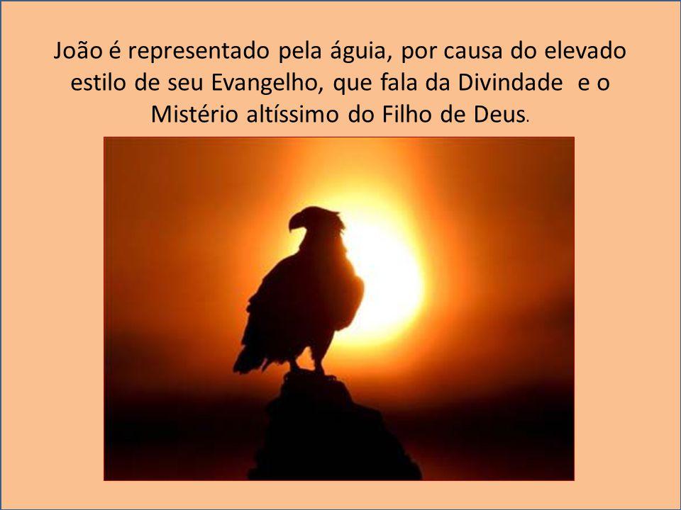 João é representado pela águia, por causa do elevado estilo de seu Evangelho, que fala da Divindade e o Mistério altíssimo do Filho de Deus.