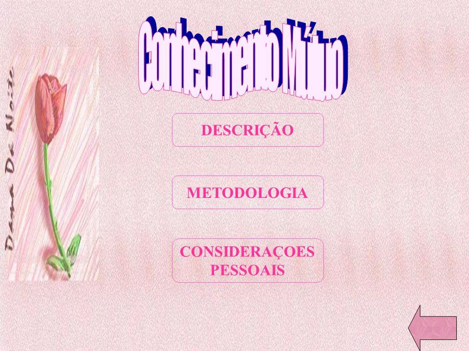 DESCRIÇÃO METODOLOGIA CONSIDERAÇOES PESSOAIS
