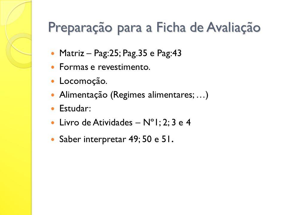 Preparação para a Ficha de Avaliação Matriz – Pag:25; Pag.35 e Pag:43 Formas e revestimento.
