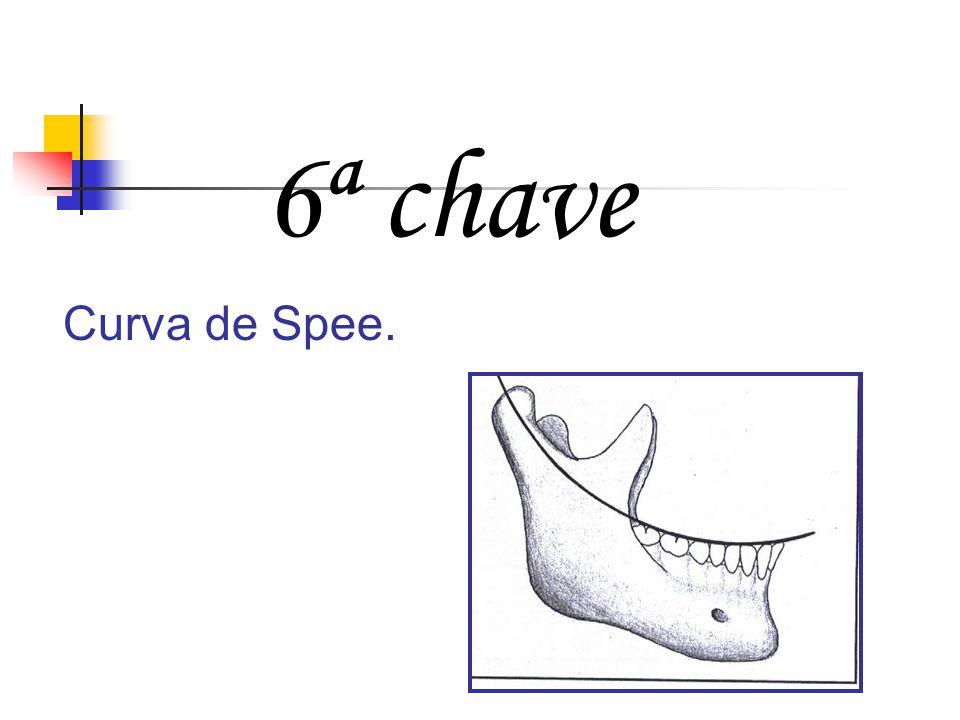 6ª chave Curva de Spee.