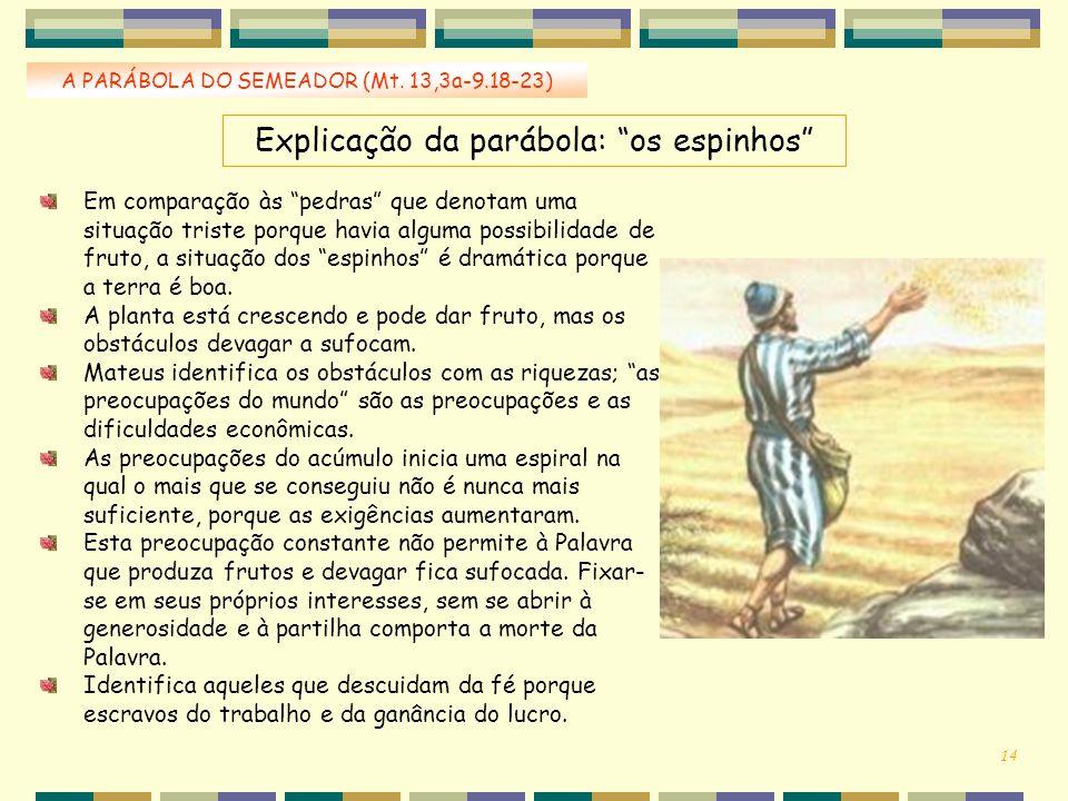 """Explicação da parábola: """"os espinhos"""" A PARÁBOLA DO SEMEADOR (Mt. 13,3a-9.18-23) 14 Em comparação às """"pedras"""" que denotam uma situação triste porque h"""