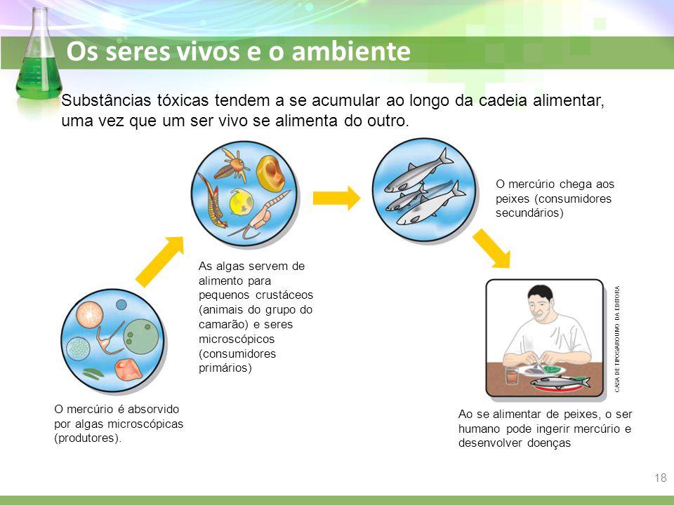 Os seres vivos e o ambiente O mercúrio é absorvido por algas microscópicas (produtores). Substâncias tóxicas tendem a se acumular ao longo da cadeia a