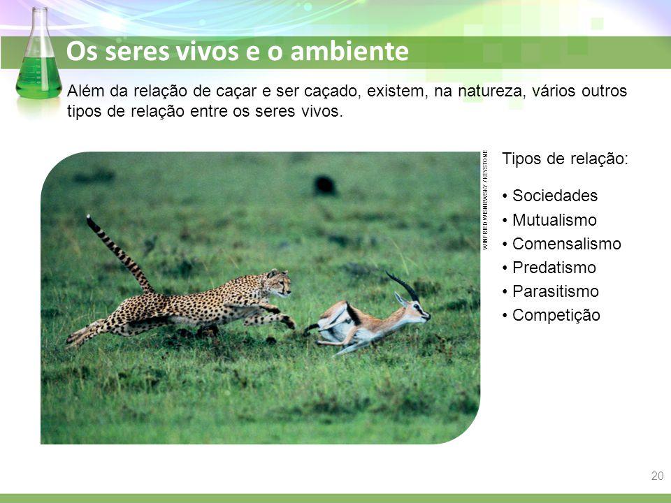 Os seres vivos e o ambiente Além da relação de caçar e ser caçado, existem, na natureza, vários outros tipos de relação entre os seres vivos. Tipos de