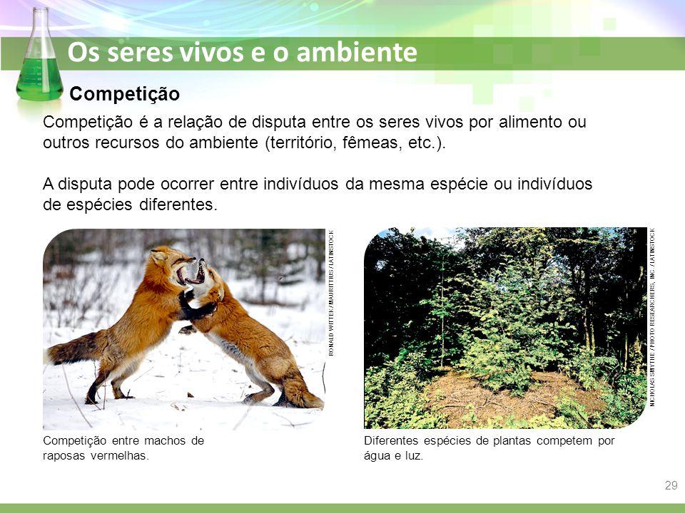 Os seres vivos e o ambiente Competição Competição é a relação de disputa entre os seres vivos por alimento ou outros recursos do ambiente (território,