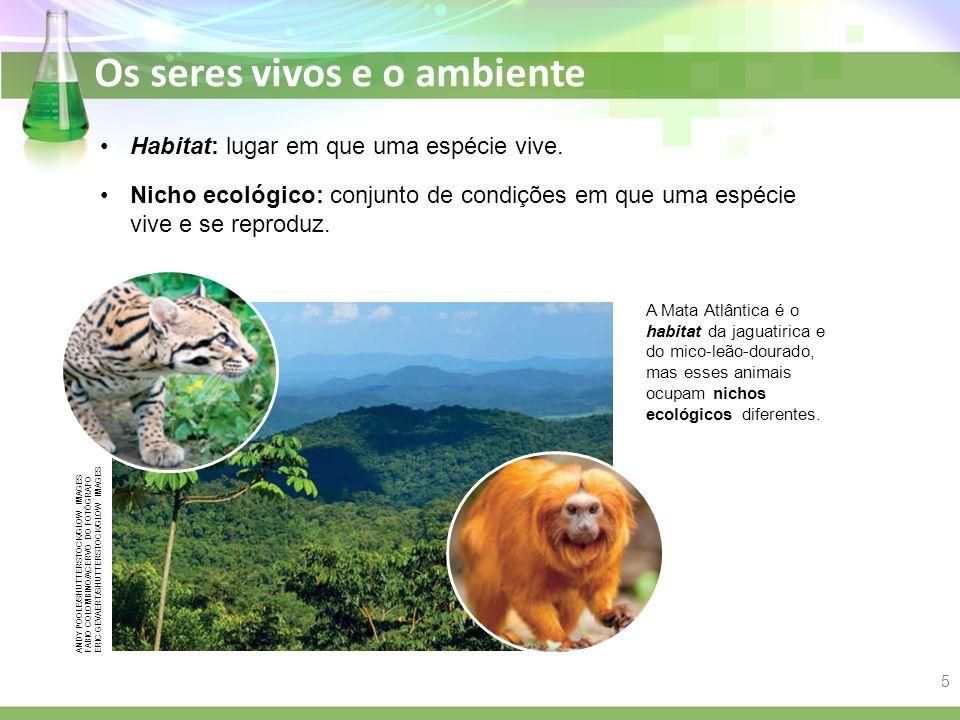 Os seres vivos e o ambiente Habitat: lugar em que uma espécie vive. A Mata Atlântica é o habitat da jaguatirica e do mico-leão-dourado, mas esses anim