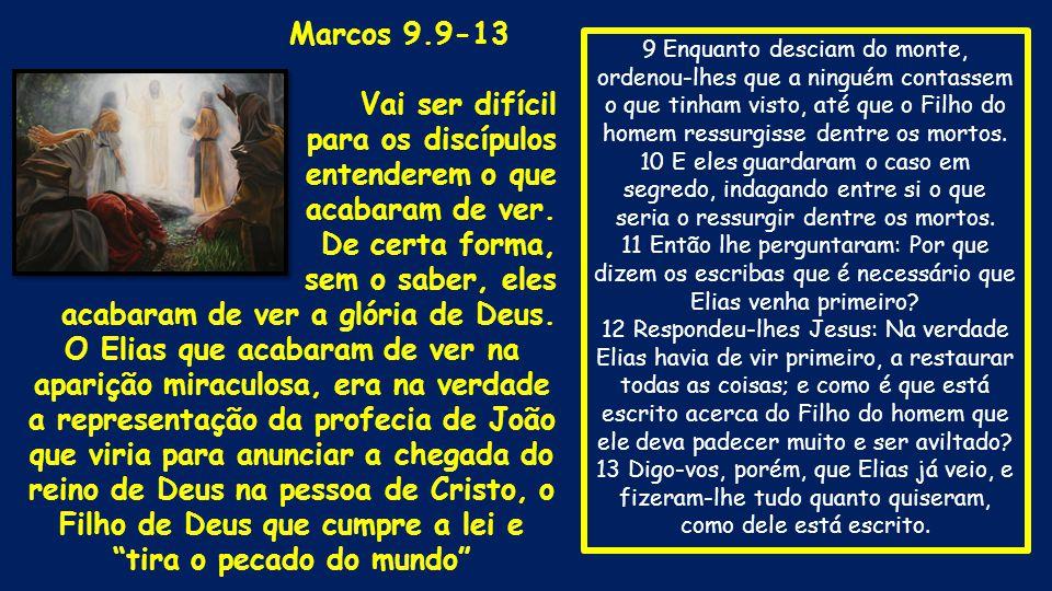 9 Enquanto desciam do monte, ordenou-lhes que a ninguém contassem o que tinham visto, até que o Filho do homem ressurgisse dentre os mortos. 10 E eles