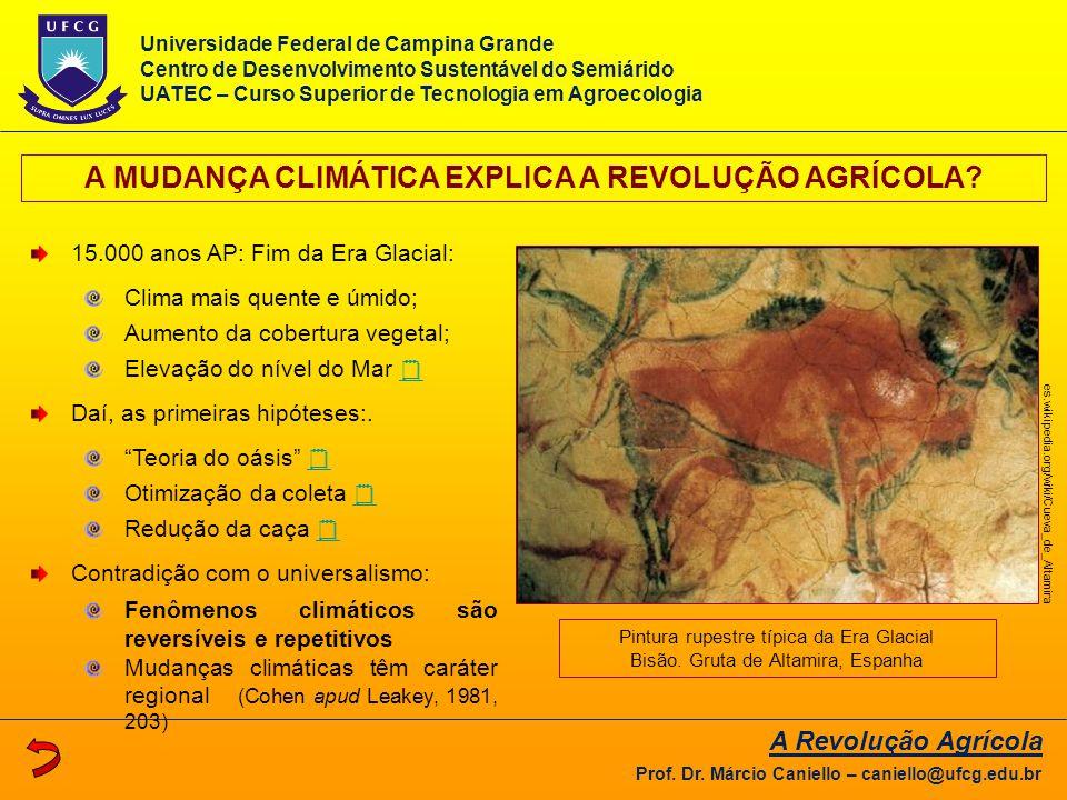AS MUDANÇAS CLIMÁTICAS DO PLEISTOCENO A Revolução Agrícola Prof.