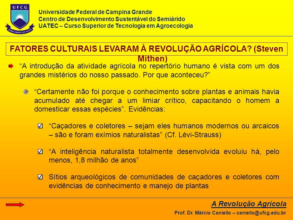 """FATORES CULTURAIS LEVARAM À REVOLUÇÃO AGRÍCOLA? (Steven Mithen) """"A introdução da atividade agrícola no repertório humano é vista com um dos grandes mi"""