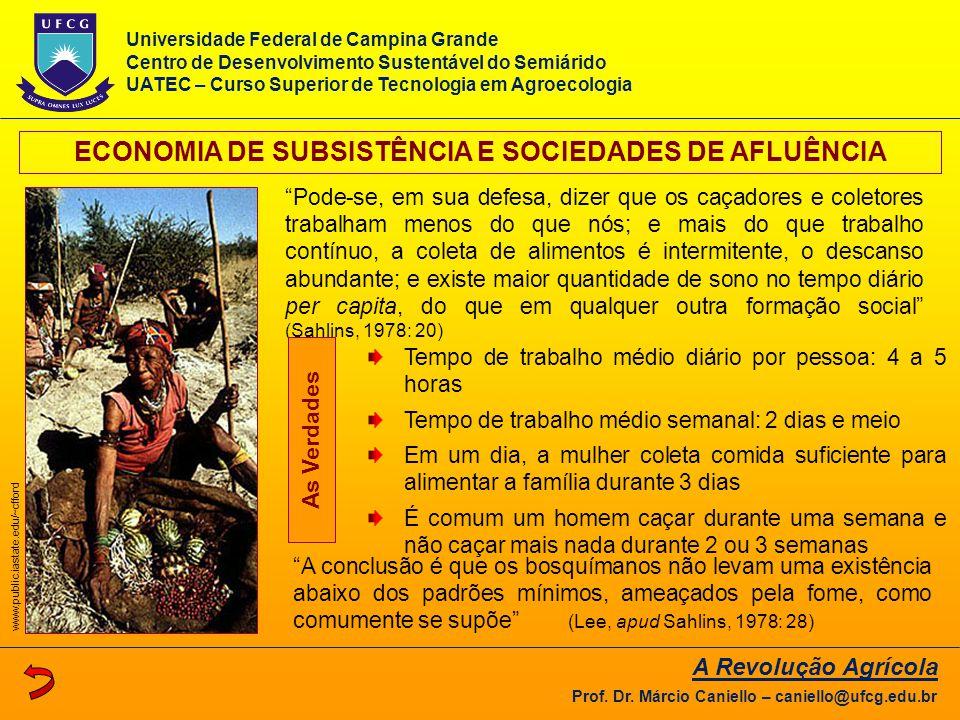 """""""A conclusão é que os bosquímanos não levam uma existência abaixo dos padrões mínimos, ameaçados pela fome, como comumente se supõe"""" (Lee, apud Sahlin"""