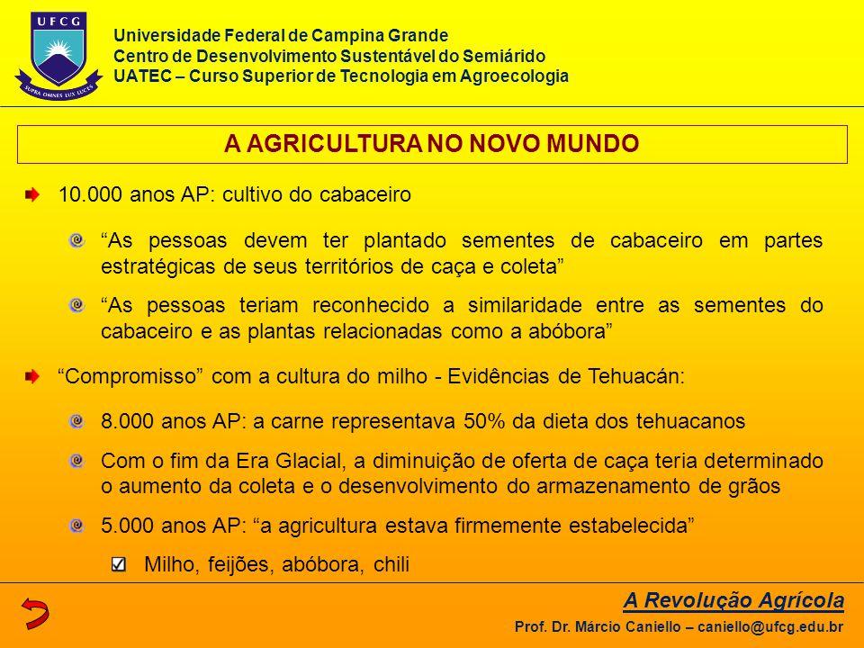 """A AGRICULTURA NO NOVO MUNDO 10.000 anos AP: cultivo do cabaceiro """"As pessoas devem ter plantado sementes de cabaceiro em partes estratégicas de seus t"""