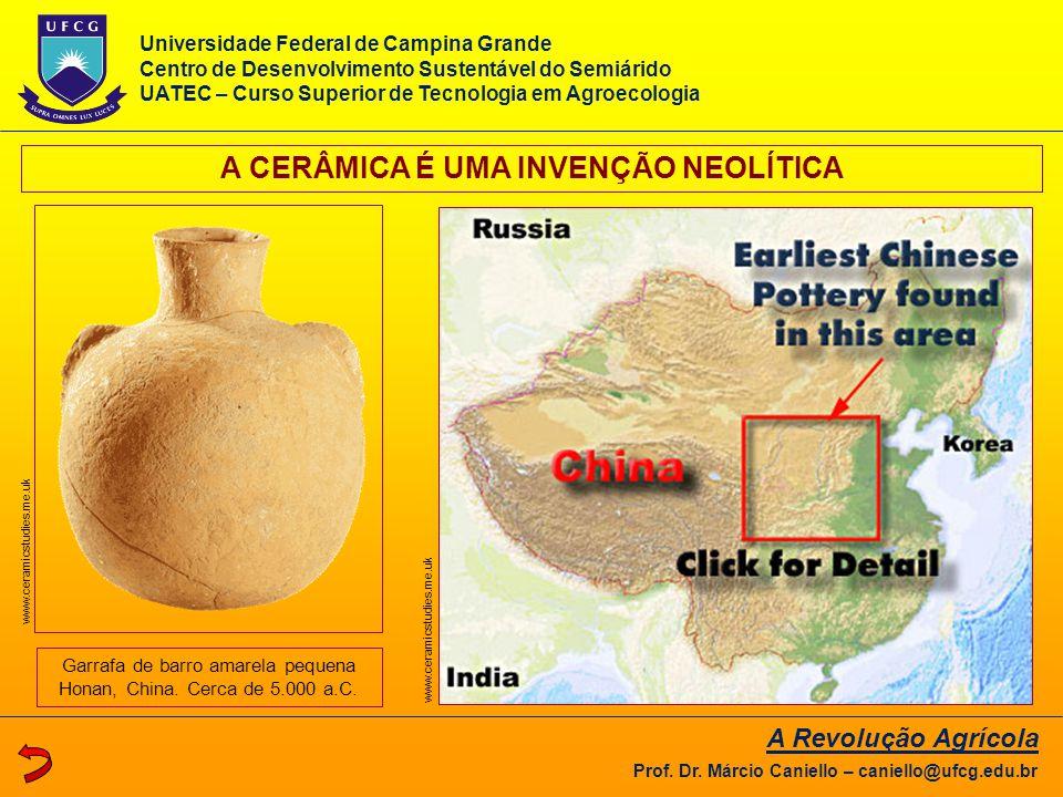 A CERÂMICA É UMA INVENÇÃO NEOLÍTICA Garrafa de barro amarela pequena Honan, China. Cerca de 5.000 a.C. www.ceramicstudies.me.uk A Revolução Agrícola P