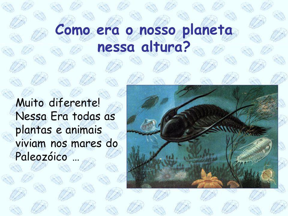 Muito diferente! Nessa Era todas as plantas e animais viviam nos mares do Paleozóico … Como era o nosso planeta nessa altura?