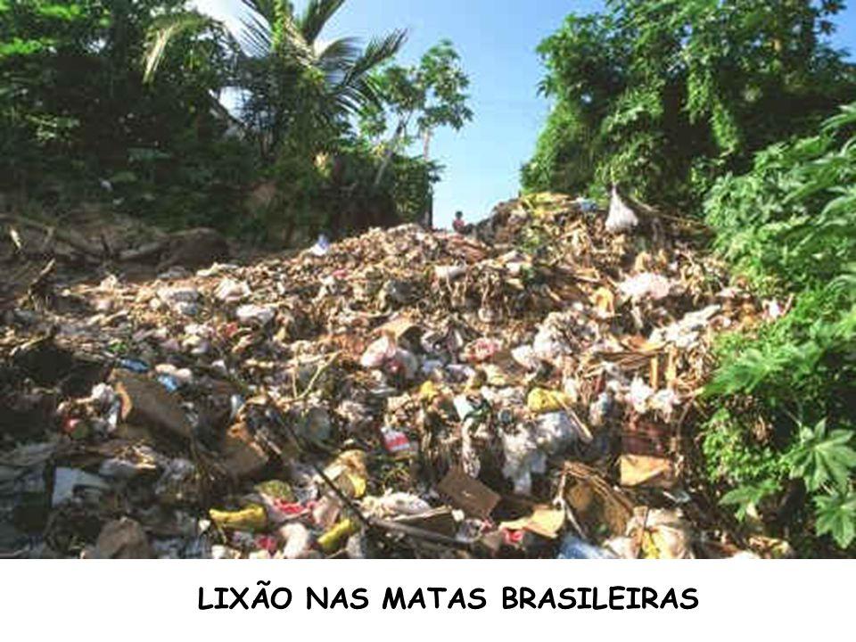 LIXÃO NAS MATAS BRASILEIRAS