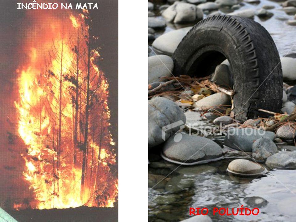 DICAS DE COMO CUIDAR BEM DO PLANETA PRESERVE A NATUREZA.