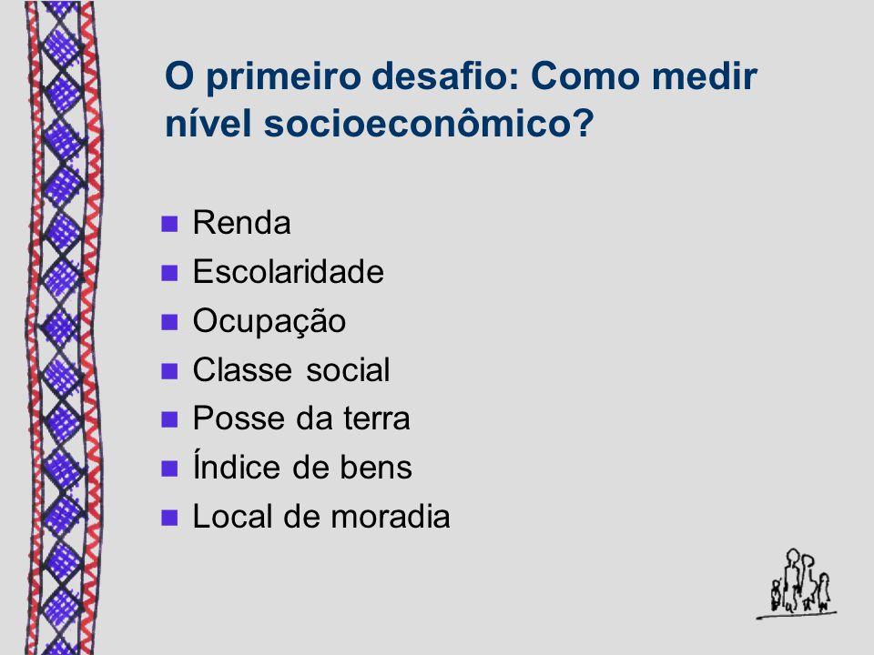 O primeiro desafio: Como medir nível socioeconômico? Renda Escolaridade Ocupação Classe social Posse da terra Índice de bens Local de moradia