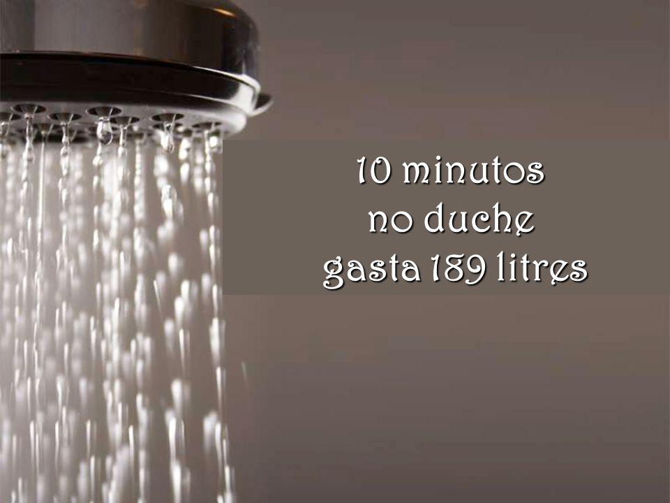 Uma só lavagem na máquina consome 151 litres
