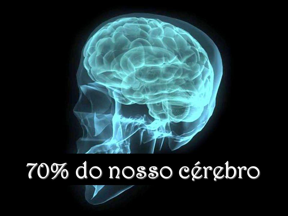 70% do nosso cérebro