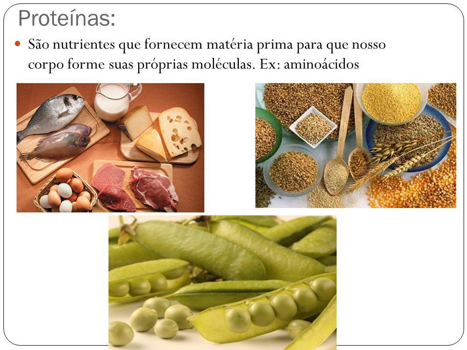 Proteínas: São nutrientes que fornecem matéria prima para que nosso corpo forme suas próprias moléculas. Ex: aminoácidos