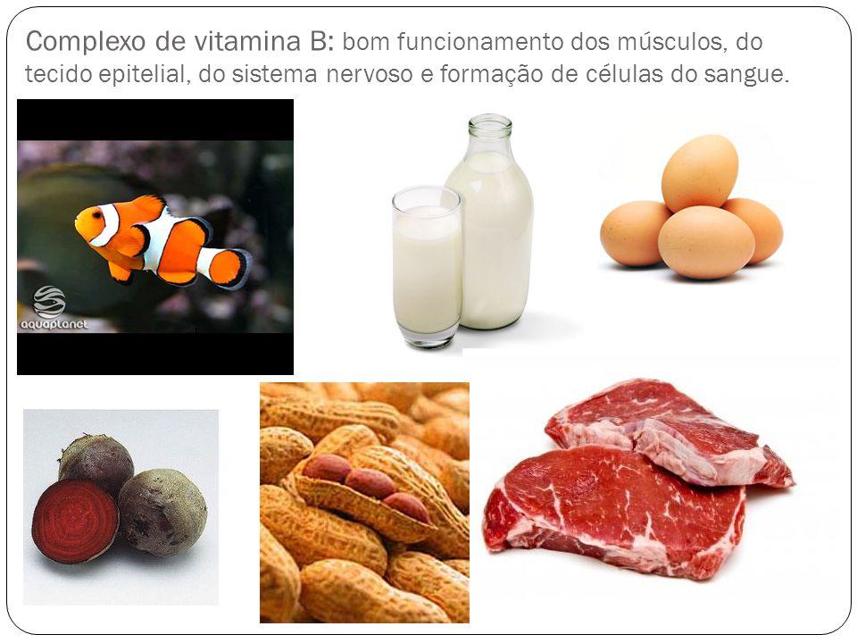 Complexo de vitamina B: bom funcionamento dos músculos, do tecido epitelial, do sistema nervoso e formação de células do sangue.