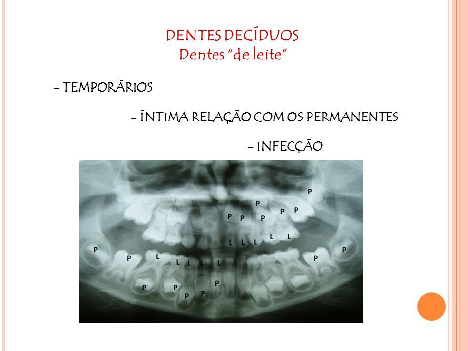"""DENTES DECÍDUOS Dentes """"de leite"""" - TEMPORÁRIOS - ÍNTIMA RELAÇÃO COM OS PERMANENTES - INFECÇÃO"""