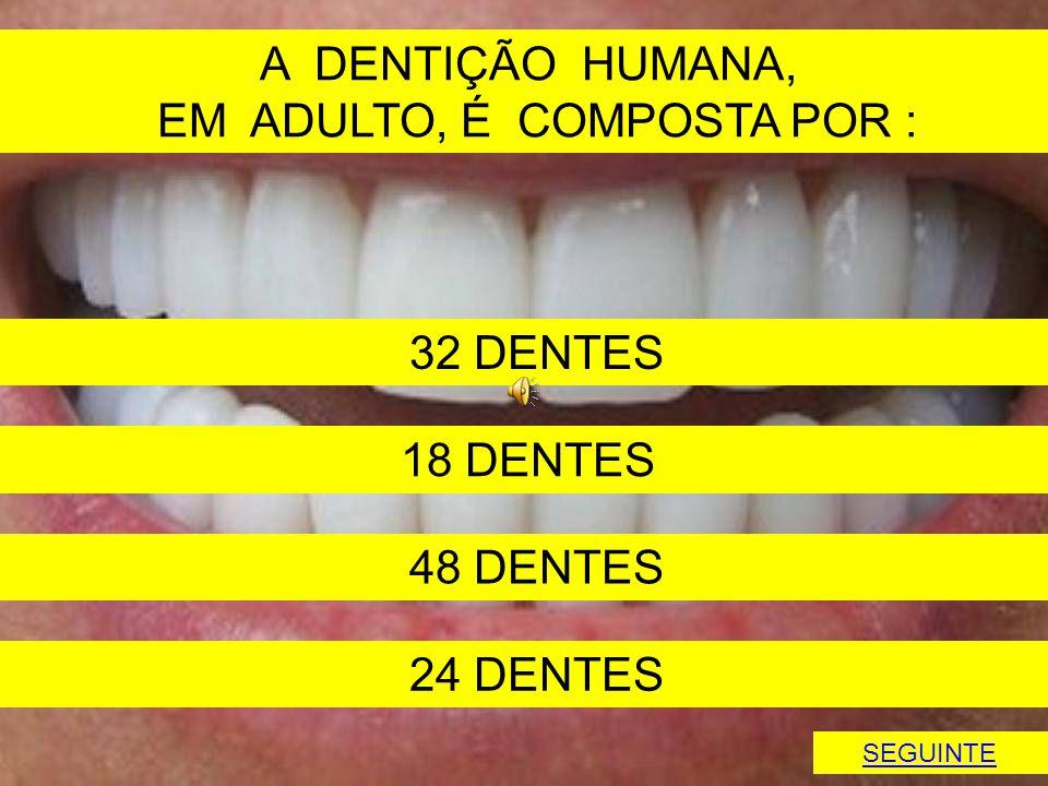 A DENTIÇÃO HUMANA, EM ADULTO, É COMPOSTA POR : 32 DENTES 48 DENTES 24 DENTES 18 DENTES