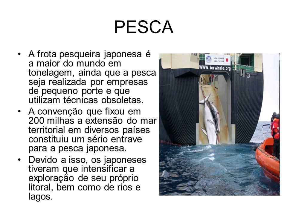 PESCA A frota pesqueira japonesa é a maior do mundo em tonelagem, ainda que a pesca seja realizada por empresas de pequeno porte e que utilizam técnicas obsoletas.