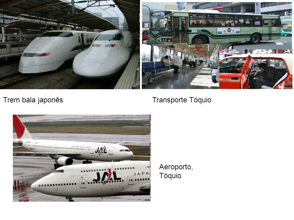 Trem bala japonêsTransporte Tóquio Aeroporto, Tóquio