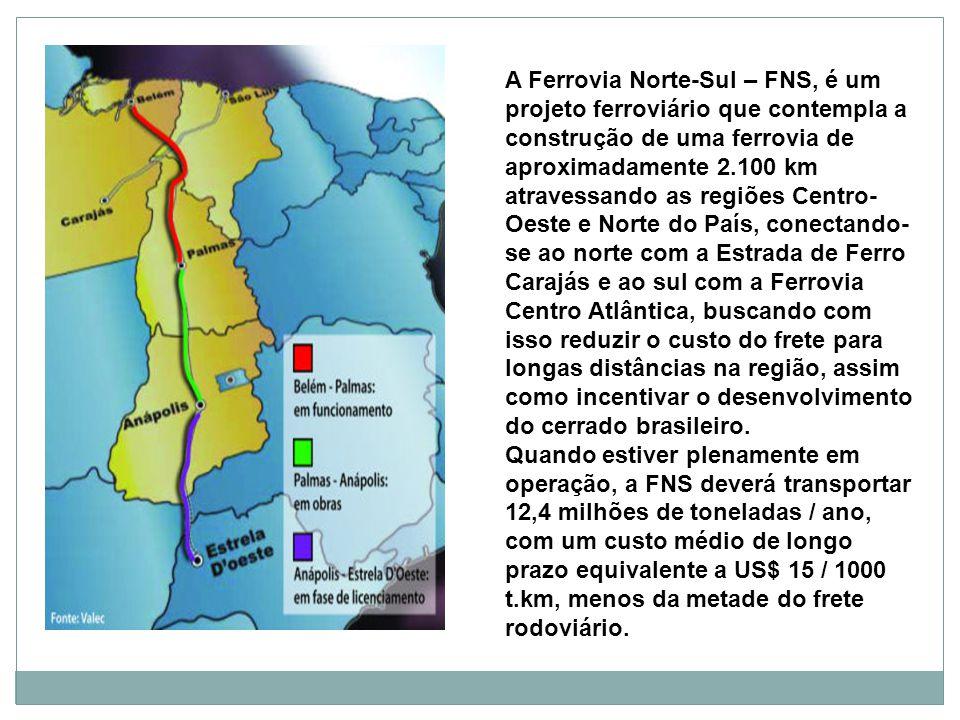 A Ferrovia Norte-Sul – FNS, é um projeto ferroviário que contempla a construção de uma ferrovia de aproximadamente 2.100 km atravessando as regiões Centro- Oeste e Norte do País, conectando- se ao norte com a Estrada de Ferro Carajás e ao sul com a Ferrovia Centro Atlântica, buscando com isso reduzir o custo do frete para longas distâncias na região, assim como incentivar o desenvolvimento do cerrado brasileiro.
