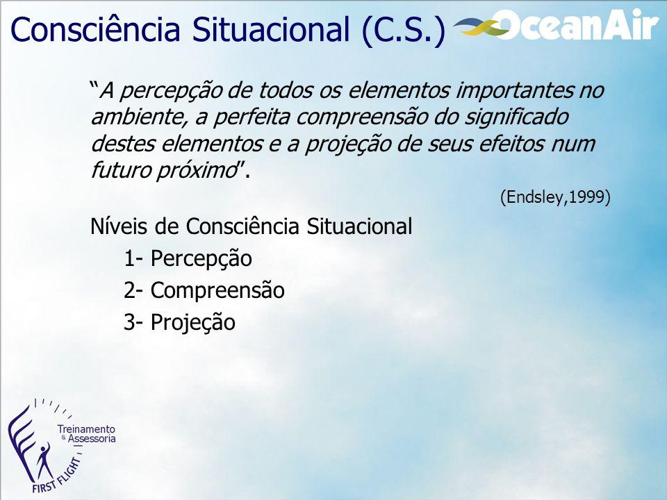 """Consciência Situacional (C.S.) """"A percepção de todos os elementos importantes no ambiente, a perfeita compreensão do significado destes elementos e a"""