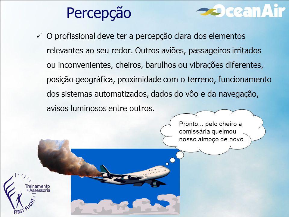 Percepção O profissional deve ter a percepção clara dos elementos relevantes ao seu redor. Outros aviões, passageiros irritados ou inconvenientes, che
