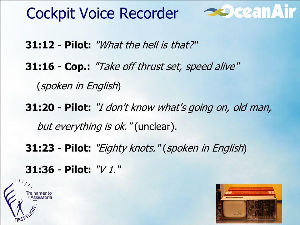 Cockpit Voice Recorder 31:12 - Pilot: