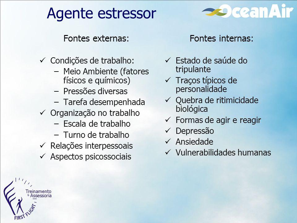 Agente estressor Fontes externas: Condições de trabalho: –Meio Ambiente (fatores físicos e químicos) –Pressões diversas –Tarefa desempenhada Organizaç