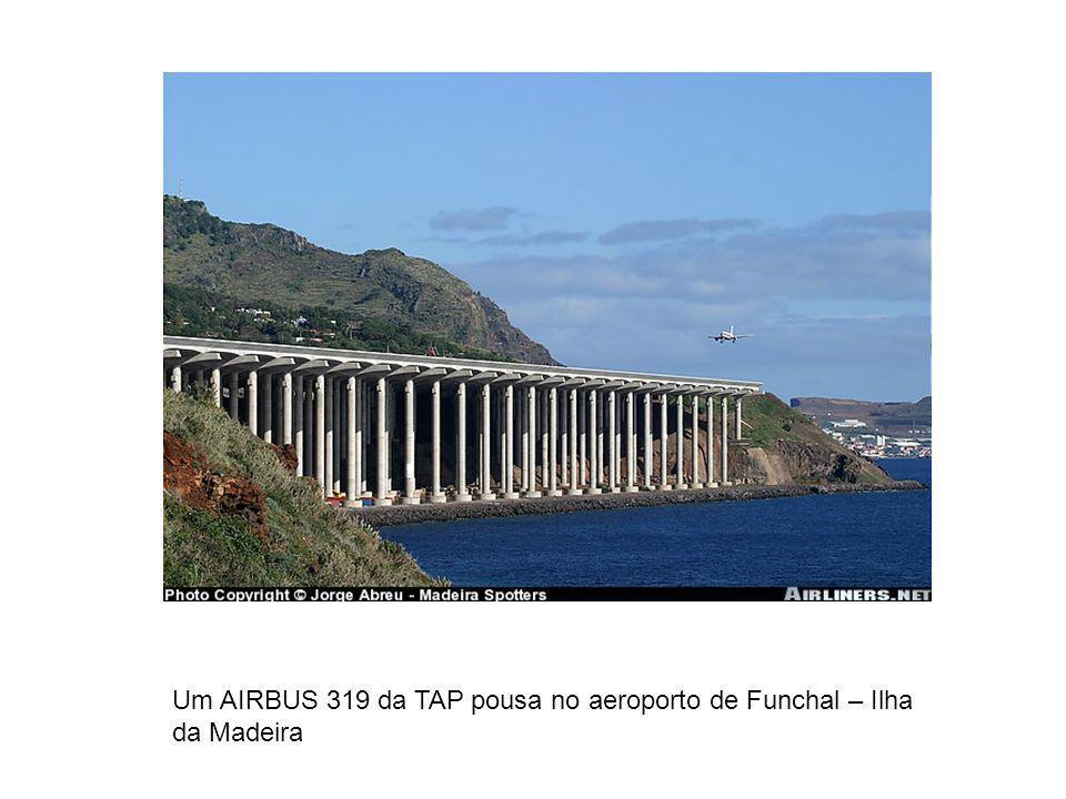 Um AIRBUS 319 da TAP pousa no aeroporto de Funchal – Ilha da Madeira