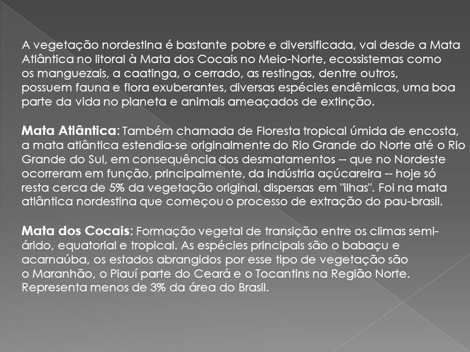 Cerrado : Ocupa 25% do território brasileiro, mas no Nordeste só abrange o sul do estado do Maranhão e o oeste da Bahia.