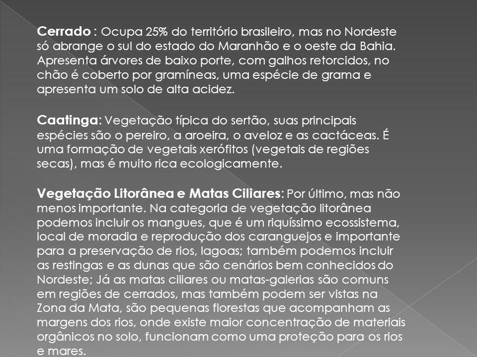 Cerrado : Ocupa 25% do território brasileiro, mas no Nordeste só abrange o sul do estado do Maranhão e o oeste da Bahia. Apresenta árvores de baixo po