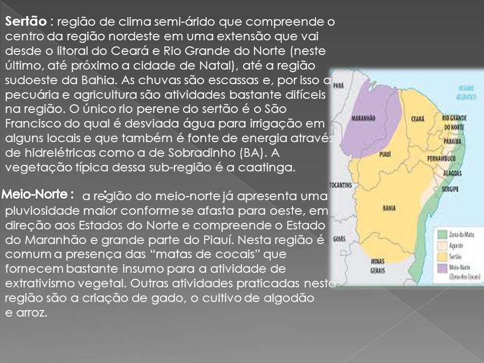 Sertão : região de clima semi-árido que compreende o centro da região nordeste em uma extensão que vai desde o litoral do Ceará e Rio Grande do Norte