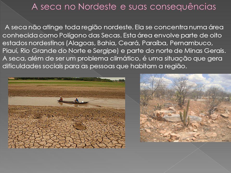 Com a falta de água, torna-se difícil o desenvolvimento da agricultura e a criação de animais.