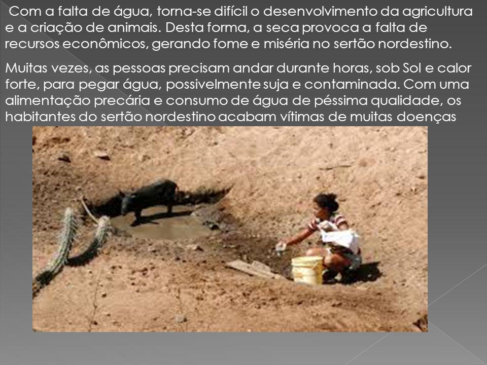 Com a falta de água, torna-se difícil o desenvolvimento da agricultura e a criação de animais. Desta forma, a seca provoca a falta de recursos econômi